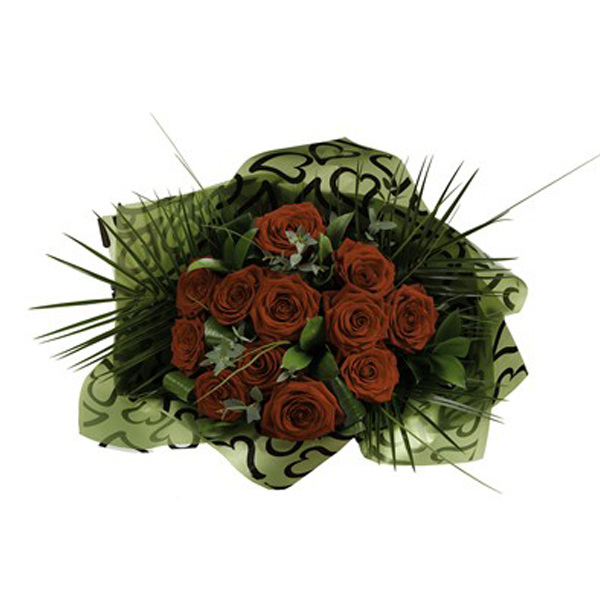 Dozen Red Roses – Freedom
