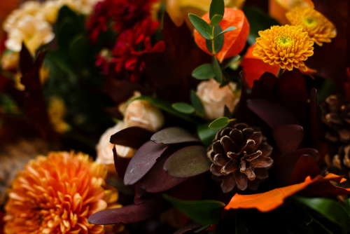 autumn trends online flower delivery Sheffield