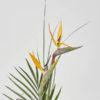 bird of paradise flower bouquet from katie peckett sheffield florist
