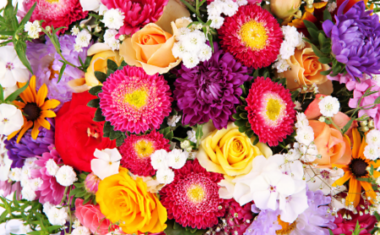 Caring for Fresh Flowers – Top Tips from a Sheffield Flower Shop