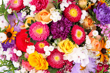 caring fresh flowers Sheffield florist