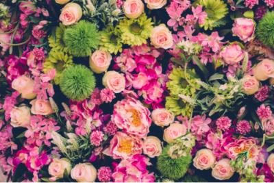 Sheffield Florist Explains the Health Benefits of Flowers