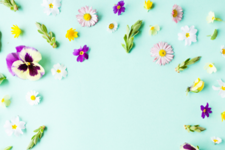5 Floral Picks to Brighten up your Home for Spring