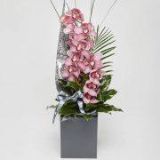 cymbidium orchid from sheffield florist katie peckett