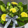 liliy and gerbera bouquet from sheffield florist