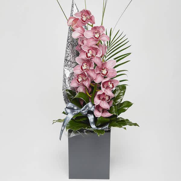 modern Cymbidium hand tied Orchid online flower Sheffield