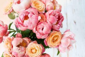 Sheffield florist peonies