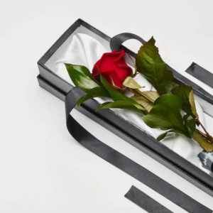 single red rose in katie peckett gift box